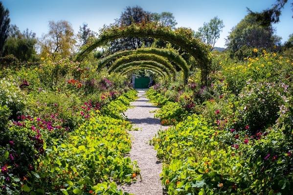 Calude Monet's Garden