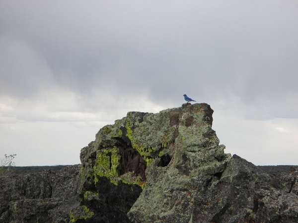 Craters Of The Moon-View2
