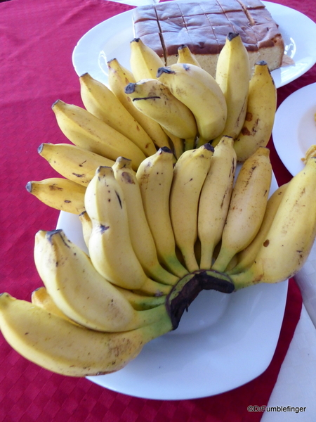 Bananas. New Years and Hotel, Polonnaruwa (15)