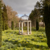Thorpe Perrow - daffodils and folly.