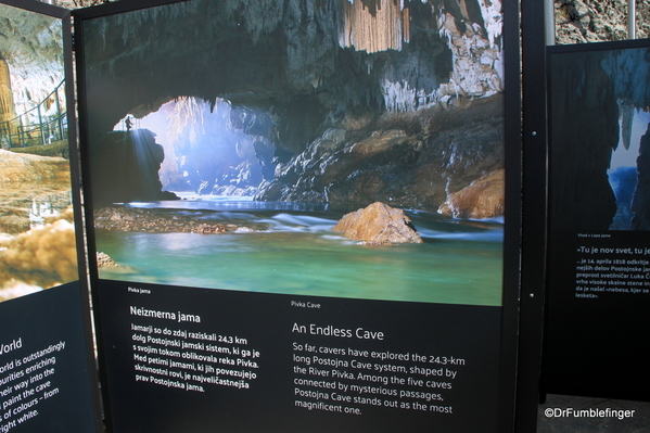 08 Postojna Cave