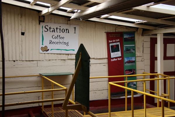 11-04 Doka Coffee Plantation (27)