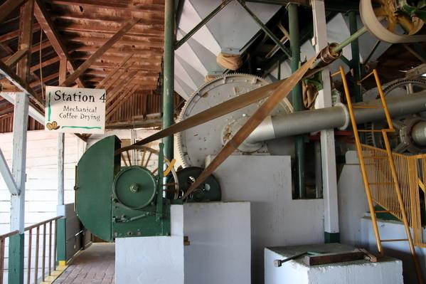 15-04 Doka Coffee Plantation (37)