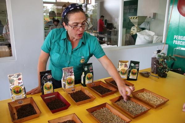 22-04 Doka Coffee Plantation (71)