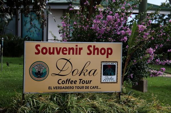 24-04 Doka Coffee Plantation (73)