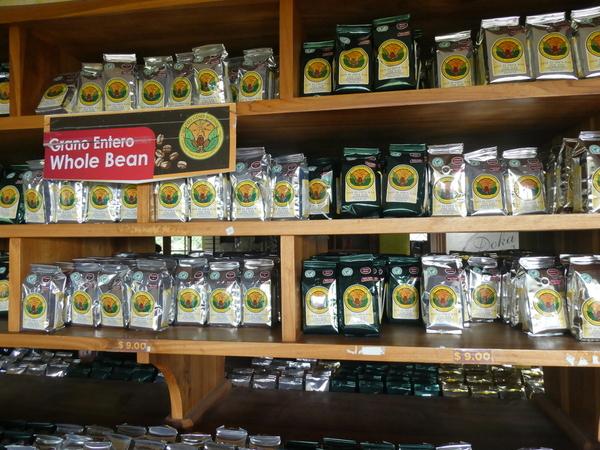 26-04 Doka Coffee Plantation (78)