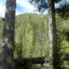 09 DeVoto Cedar Grove