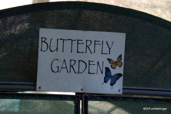 01 Butterfly garden at Guapiles