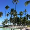 taveuni fiji resort