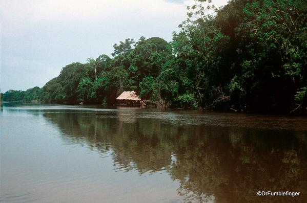 01 Peruvian Amazon