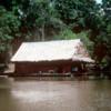 02 Peruvian Amazon