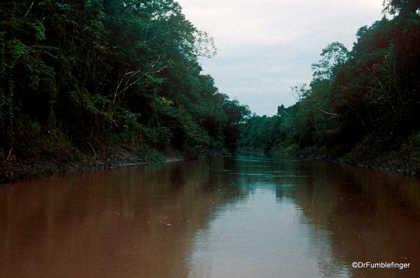 07 Peruvian Amazon