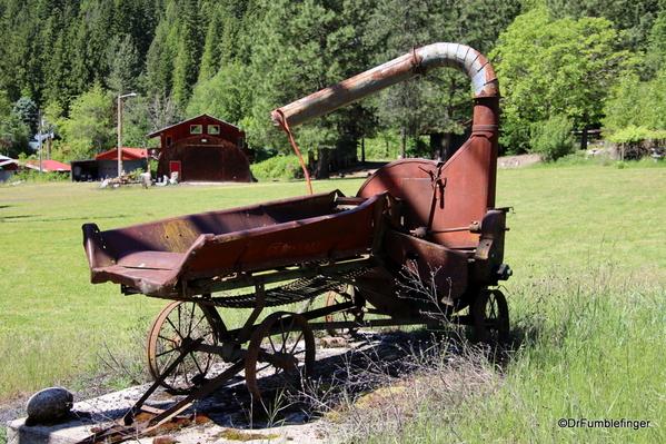 08 Syringia Idaho