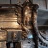 12 Vasamuseum