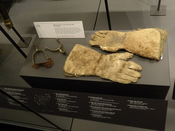 Gloves and Spurs