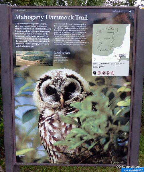 01 Mahogany Hammock Trail