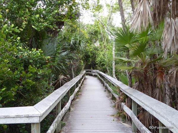 07 Mahogany Hammock Trail