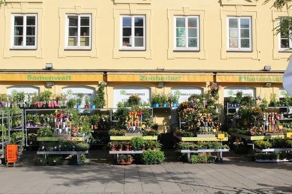Viktualienmarkt-Flowers-2