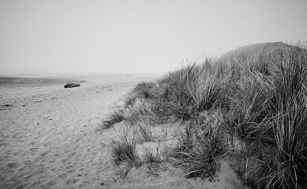 Mist and Dunes BW w