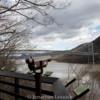 Lessuck_Hudson River-1