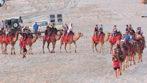 Camel train, Broome
