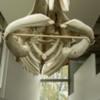 Lessuck - museum Earth-11