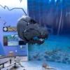 Lessuck - museum Earth-17