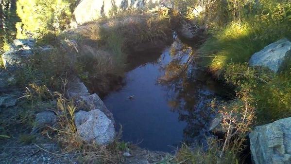 Mono Hot Springs-3