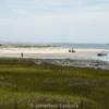 Lessuck_hunting island-14