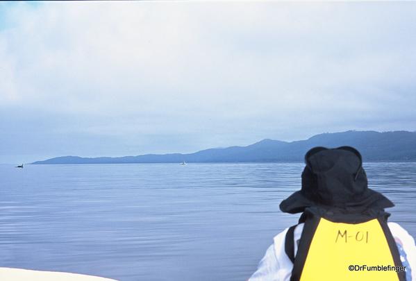 04 Johnstone Strait