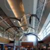 Calgary International Airport