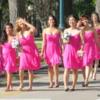 Bridesmaids group, Manitoba Legislature grounds, Winnipeg, Manitoba, Canada