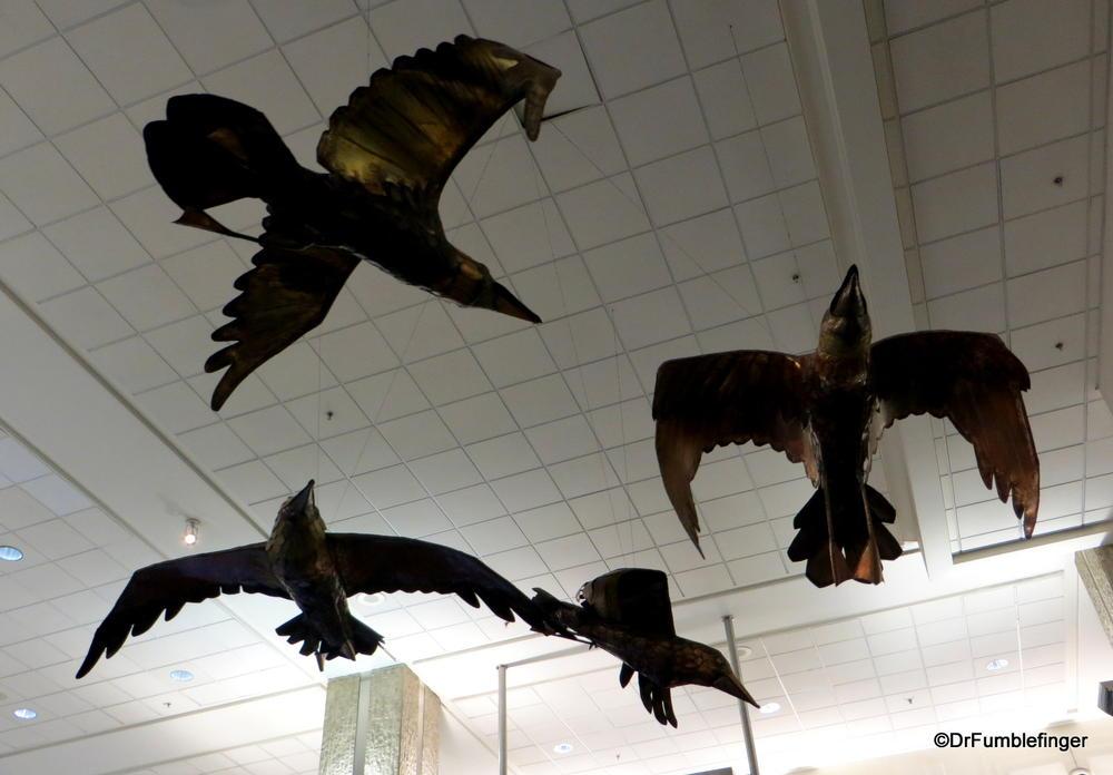 Birds in Flight, Tampa International Airport, Florida