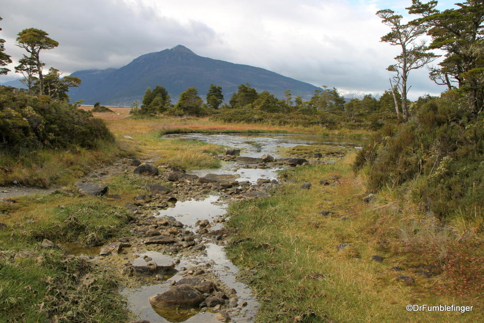 Some of the scenery on our hike in Tierra Del Fuego, Chile