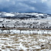 It's still winter in the foothills of the Canadian Rockies, Alberta