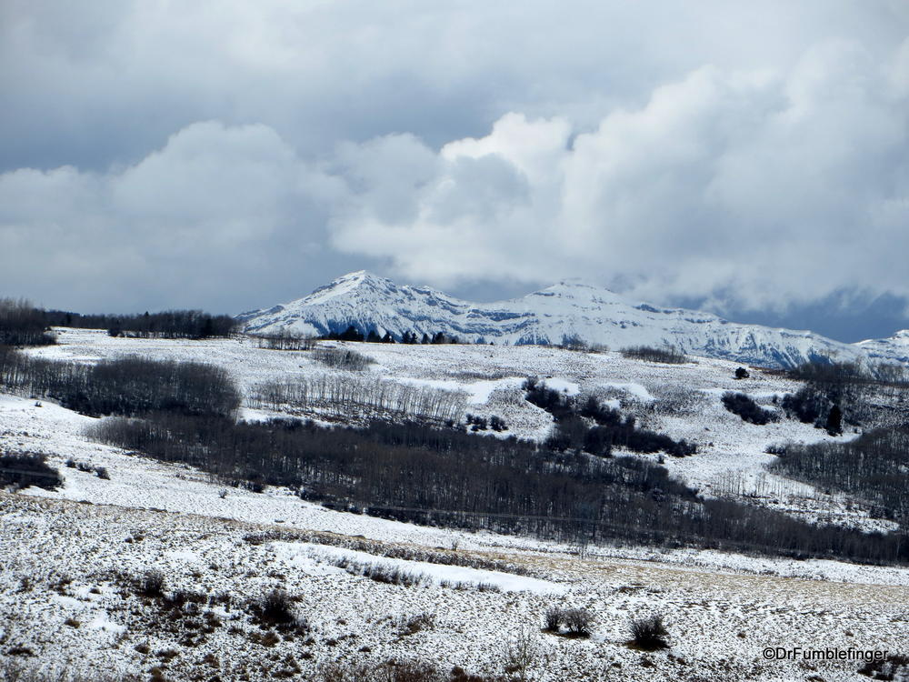 Still winter in the foothills of the Canadian Rockies, Alberta