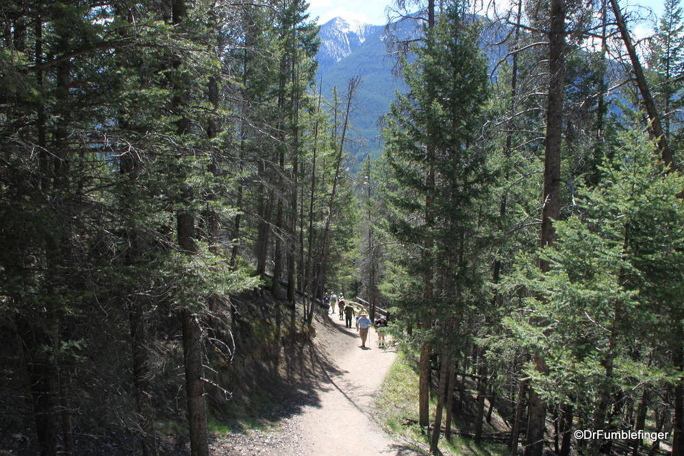 Trail up Tunnel Mountain, Banff National Park