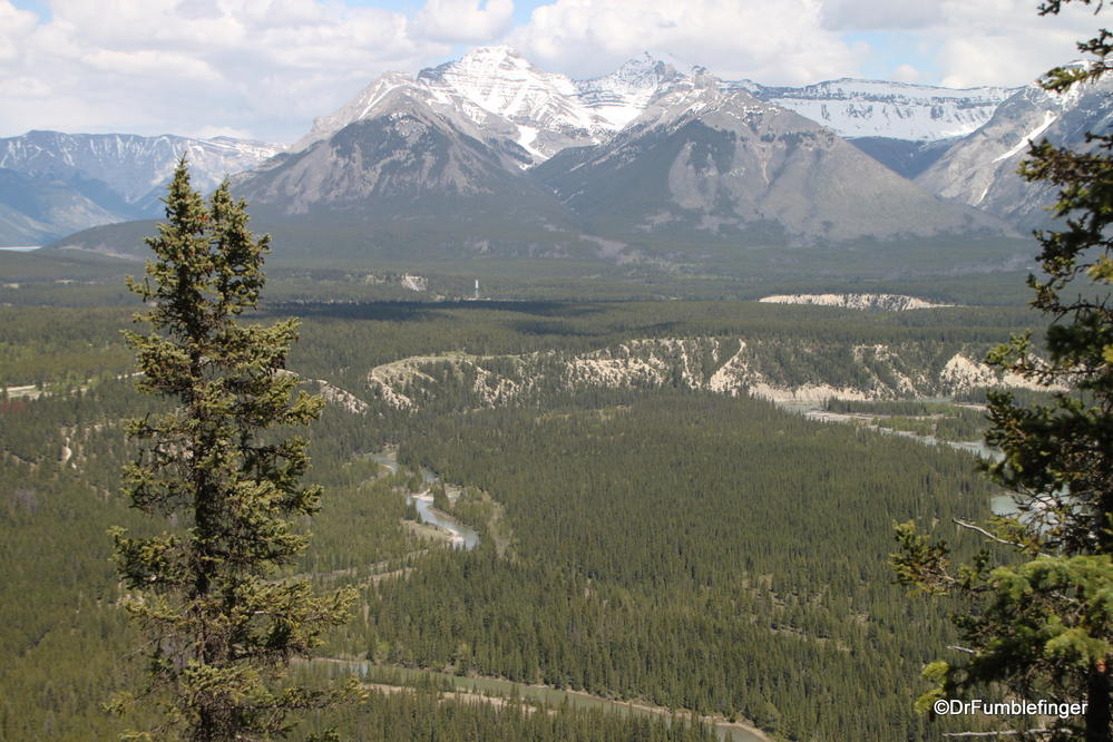 Bow River Valley viewed from Tunnel Mountain, Banff National Park