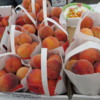 It's Peach Time!  Minturn Farmer's Market, Colorado