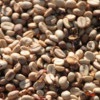 Kona coffee beans drying in the sun, Big Island of Hawaii