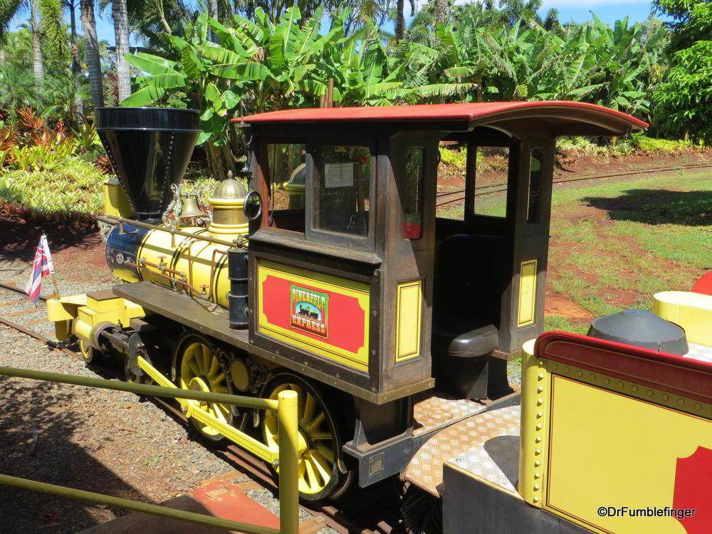 Pineapple Express Train, Dole Plantation   TravelGumbo