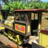 Pineapple Express Train, Dole Plantation