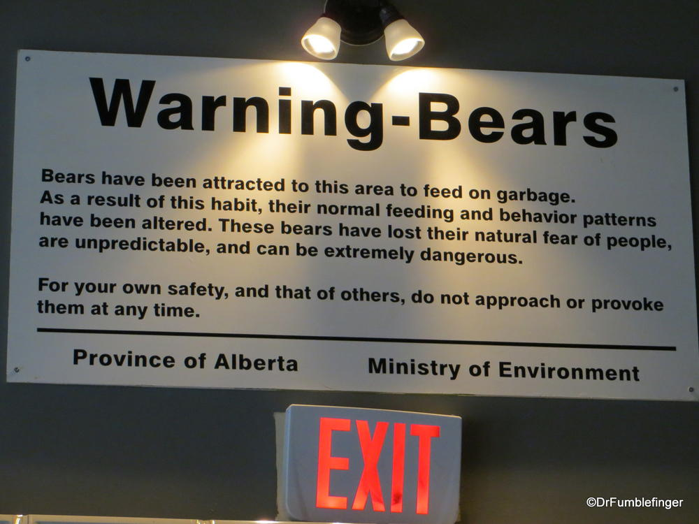 """Not the usual sign you see in your local pub.  Canmore's """"Bear Paw"""""""