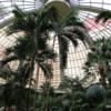 Mirage Resort's atrium