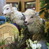 Year of the Sheep exhibit, Palazzo resort, Las Vegas, Nevada