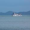 Tug Boat to Paradise
