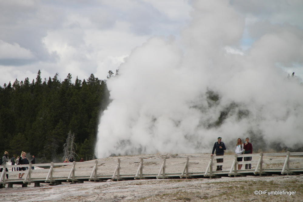 One of the fun things about Yellowstone is to be surprised by a Geyser erupting nearby.  Upper Geyser Basin, Yellowstone National Park