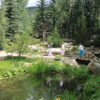Betty Ford Alpine Gardens, Vail, Colorado