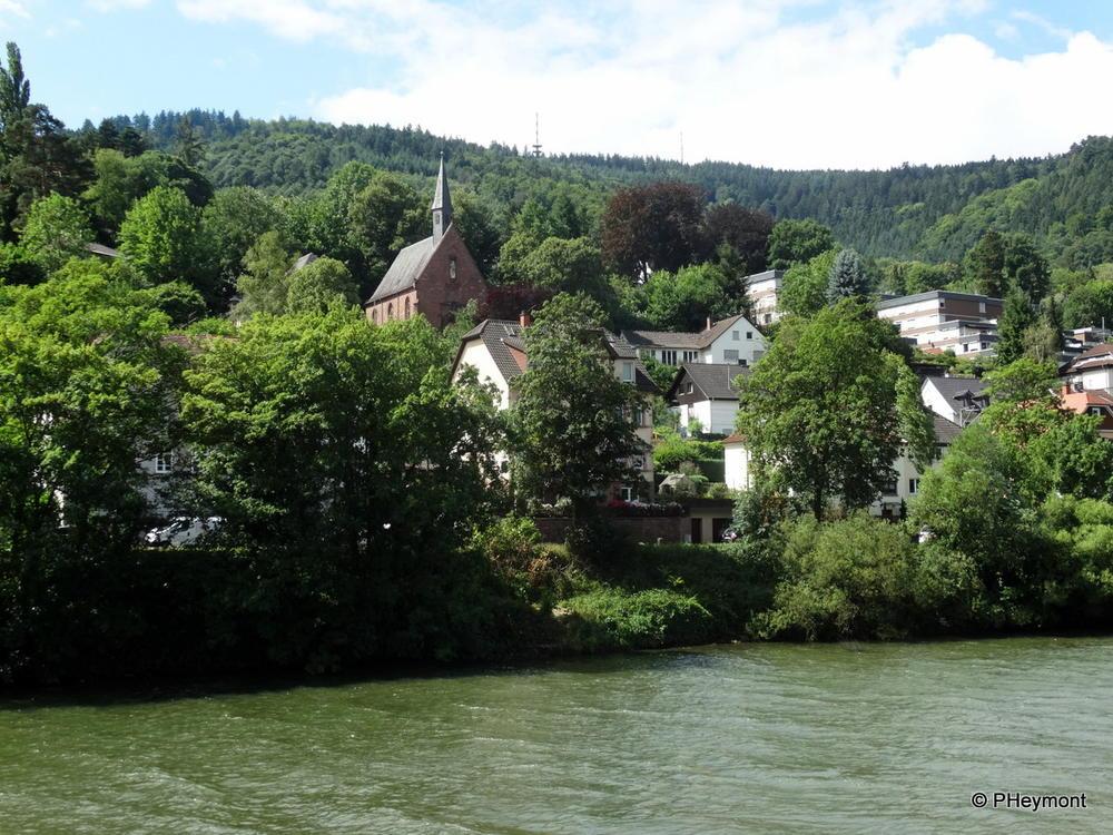 Neckar Cruise