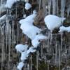 Icicles at Lake Coeur d'Alene